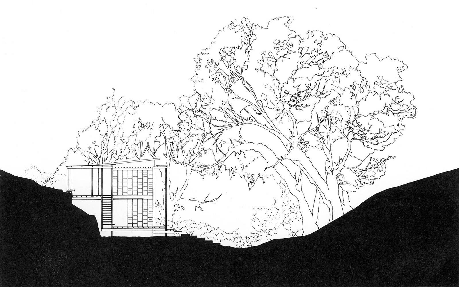 Andresen O'Gorman: Rosebery House, Highgate Hill, Queensland, Australia 1997. Section.