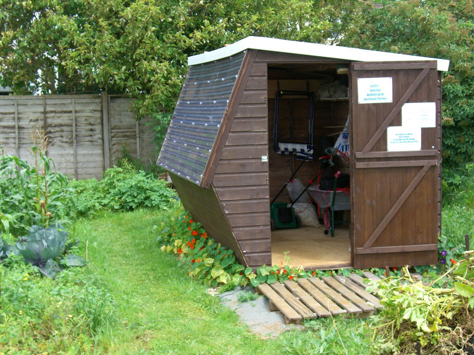 An allotment. Keith's shed.
