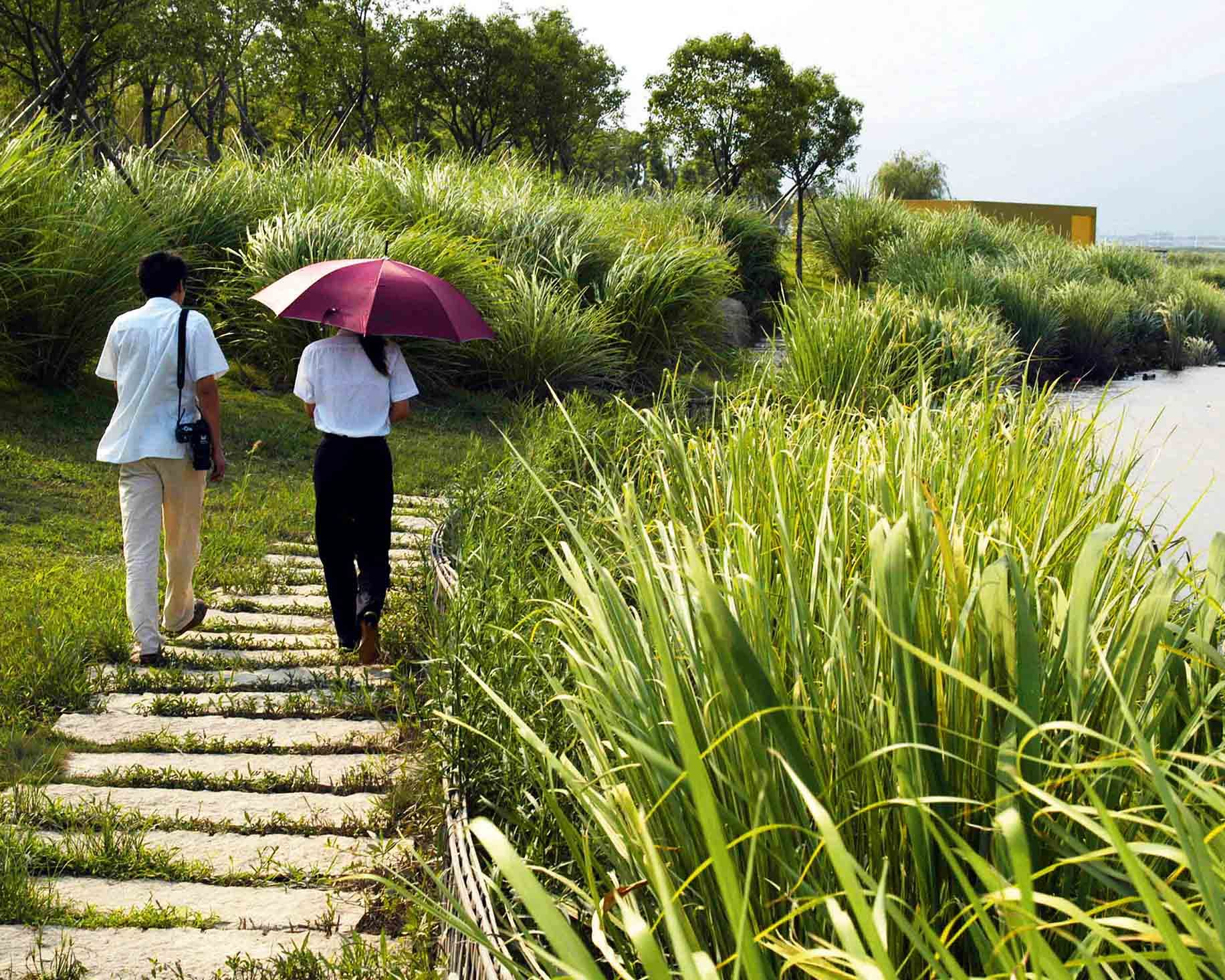 Yongning River Park, Taizhou City, Zhejiang, 2004. A combination of natural and man-made elements provides an alternative storm water management solution.